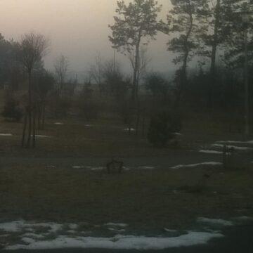 Zimowy poranek w trasie …